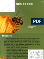 Presentacion Exportacion de Miel