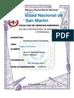 GALLINAS DE POSTURA - PECUARIAS.docx