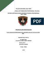 TESIS-Proyecto-de-Investigacin-Ok-Desarrollado(7).docx