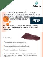 ABSCESSO HEPÁTICO EM BOVINOS DE ABATE.pptx