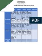 Rubrica de Organización Y Comprensión Dentro Del Juego en Línea