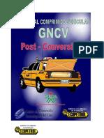 43944109 Manual de Post Conversion Gnv