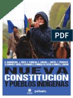 Nueva Constitución y Pueblos Indígenas