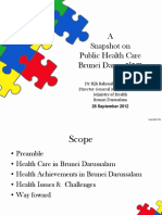 Snapshot_of_Public_Health_Care.pdf