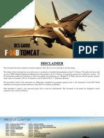 DCS F14 Guide