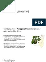 Lum Bang