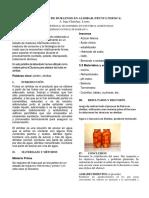 ARTICULO-cientifico-loama.docx