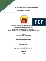 TESIS ING. LILIA ROSA MELGAR PARVINA.docx