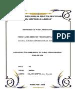 Titulo Preliminar Del Nuevo Codigo Procesal Penal