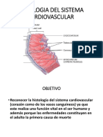 225891176 Sistema Cardiovascular Pptx