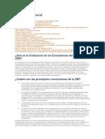 Panorama general.docx.pdf