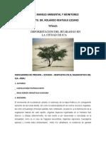 Deforestacion Del Huarango