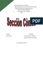 INFORME SECCION CONICA