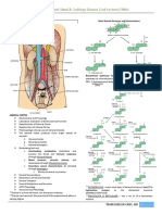 A1 ENDO2 Adrenal Gland Cushings Disease 2nd Lec Dr Liong Cheng FINAL Recording