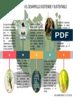INFOGRAFIA. El Curriculo Para El Desarrollo Sostenibe. Indimar Garcia v23573526