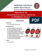 Informe 01 Transporte Del Agua a Través de La Membrana Celular