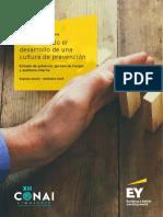 Promoviendo la cultura de prevención de riesgos en el Perú