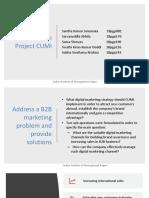 B2B Term Project CUMI.pptx
