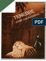 John Galsworthy - Tenebre