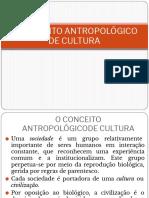 Aula 1 O Conceito Antropológico de Cultura (1)
