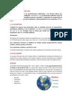 desarrollo sustentable (apuntes).docx