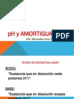 CLASE-pH-Y-AMORTIGUADORES.ppt