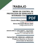 Trabajo Accion Popular Sierra Nevada de Santa Marta-1.doc