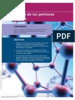 pentosas.pdf