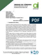 Guia Pcr Denv-chikv-zika 2019-II