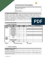 Informe Pk