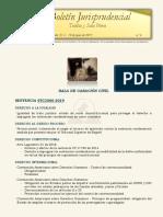 Boletin Jurisprudencial Junio 2019