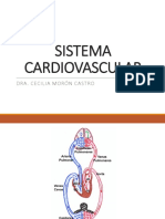 Semana 06.1 (Sistema Cardiovascular)