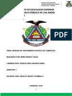 Instituto de Educacion Superior Tecnologico Público de Los Andes Carumas