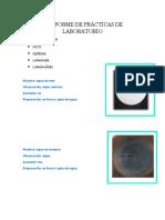 Informe de Prácticas de Laboratorio
