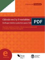 Cálculo en 2 y 3 Variables - Fac. de Cs. Exactas (18!07!2019).PDF-PDFA