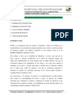 AUDITORIA AMBIENTAL JOEL.docx