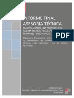 Informe Final Asesoria Elaboracion Norma Glosario (Sept. 2016)