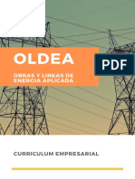 Curriculum Oldea
