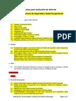 Instructivo para realización de Informe Proyecto Programa SSO