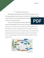 research essay- ferns-2