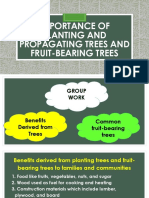 Importance of Planting and Propagating Trees and Fruit-bearing [Autosaved]
