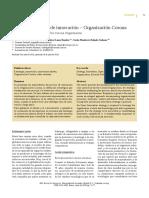 Corona.pdf