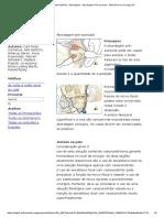 Face Intermediária - Abordagem - Abordagem Pré-Auricular - Referência Da Cirurgia AO (1)