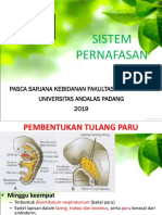 9. Sistem Pernafasan