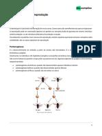Bixosp Biologia Casos Especiais de Reprodução 04-12-2019 e66973c4d805af622374a41153f8270f