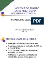 Aula - 05 metabolismo.pptx
