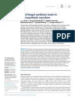 Algal-fungal Symbiosis Leads to Photosynthetic Mycelium