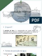 Poluição Hídrica Completo