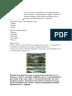 EL HABITAT.docx