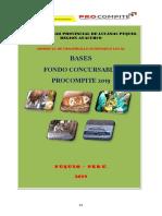 Bases Del Concurso Procompite 2019